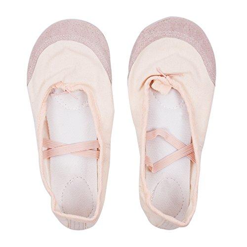 Chaussures de Ballet - TOOGOO(R) Dames Semelle souple Chaussures de Ballet Chaussures de danse Taille US 9,5 (UK 7) Rose