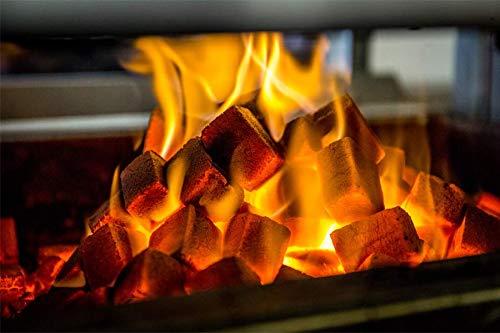 TOM COCO BBQ 10KG Premium Grillbriketts aus Kokosnussschalen Schwarz