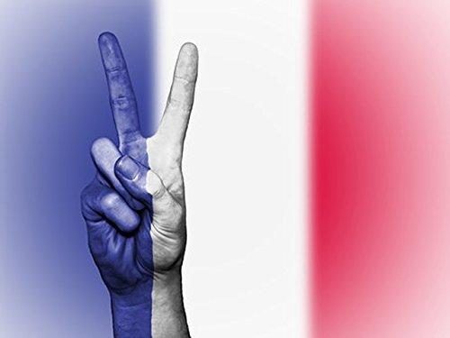 La constitution française:  la révision constitutionnelle de 23 juillet 2008