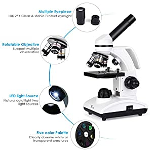 TELMU Microscope 40X-1000X Compound Monocular Microscopes with Handle, Microscope for School&Lab, Kids and Students, with Eyepiece(WF10X/25X) and 10 Sliders (Phone Adapter Included)