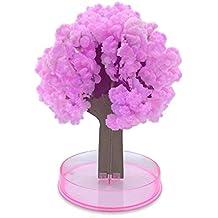 Legenden™ Árbol Sakura Mágico - DIY Hazlo Crecer en 24h - Cereza Japonesa