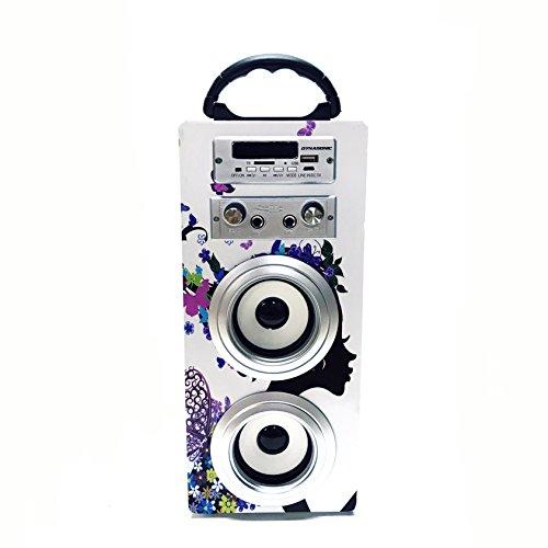 DYNASONIC   Altavoz Bluetooth Portatil con Modo Karaoke  Radio FM y Lector USB SD (Modelo 8)