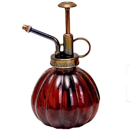 Wassersprühflasche, Pflanzen Sprühflasche, Pump-Drucksprüher, Blumensprüher, Garten Pflanzen Gießkanne, Spray Flasche Klarglas mit Sprühkopf Zerstäuber, Retro