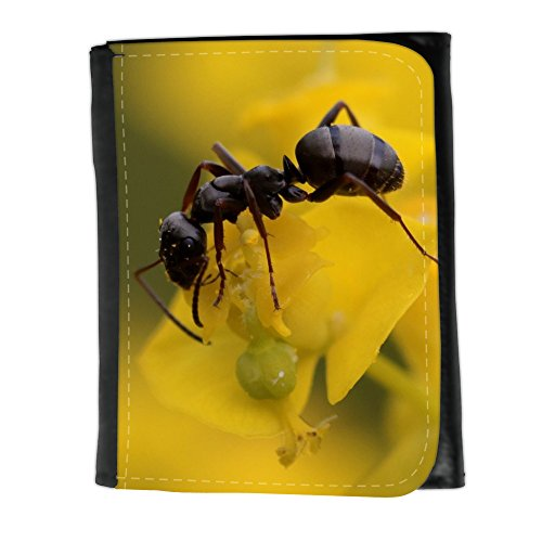 cartera-unisex-v00004047-legno-waldameise-formica-small-size-wallet