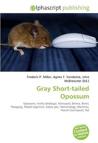 Gray Short-tailed Opossum: Opossum, Family (biology), Marsupial, Bolivia, Brazil, Paraguay, Model organism, Exotic pet, Immunology, Mammal, Pouch (marsupial), Rat