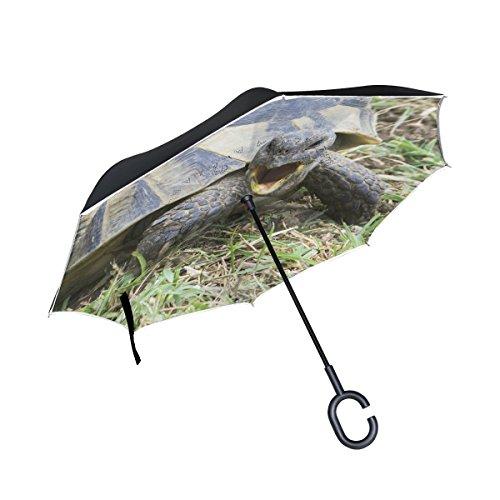 XiangHeFu Double Layer seitenverkehrt Rückseite Regenschirme Griechische Schildkröte Testudo Baumschlinge Ibera Faltbar Winddicht UV-Schutz Big Gerade für Auto mit C-Förmigem Henkel -