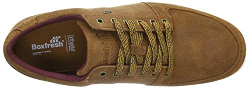 Boxfresh Spencer SH Wxdsde, Baskets Basses Homme Marron - Braun (Tan/Maroon)