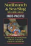 Nudbranch & Sea Slug Identification Indo-Pacific