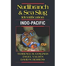 Nudbranch & Sea Slug Identification Indo-Pacific