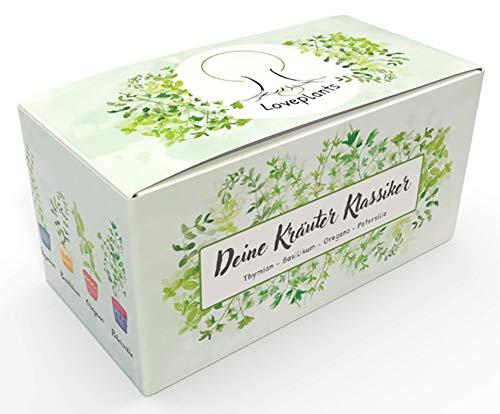 Kräuter Anzuchtset – Kräuter Pflanzset mit 4 Sorten Bio Kräuter Samen, perfektes Gechenk Set zu jedem Anlass, verpackt als Geschenk Box, ideales Geschenk für Frauen und Männer