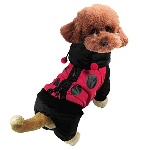 Yuncai Lustige Marienkäfer Verkleidung Kostüm für Haustier Cosplay Halloween Party Hund Kleidung Schwarz ()