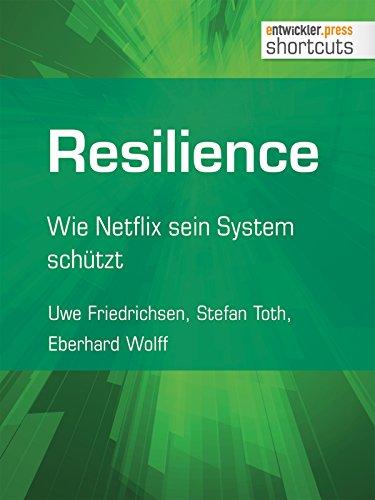 Skalierbare Softwaresysteme – Design, Betrieb und Optimierungspotenziale (German Edition)