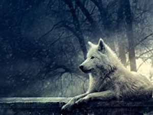 Artic Loup–Tapis de souris/Pad–24x 19cm
