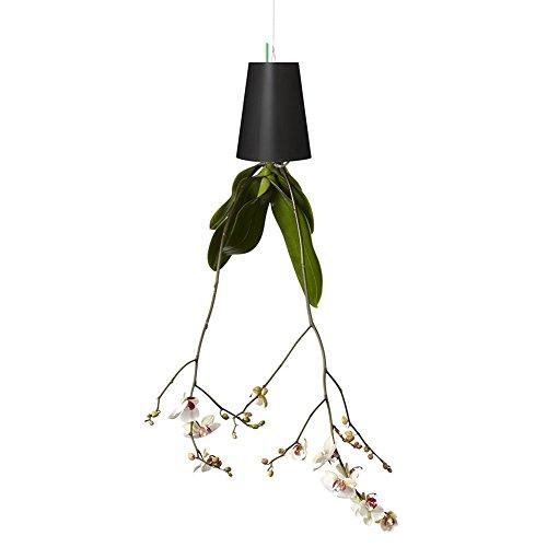 Amorar Décoration de Jardin de Ciel Inversée,Pot Suspendu de planteur de Ciel Moderne Pot de Fleurs à l