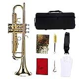 Accesorios de conjunto de instrumentos de trompeta de color profesional multicolor(Oro)