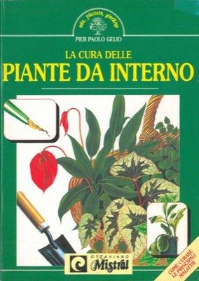 la-cura-delle-piante-da-interno