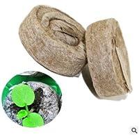 SimpleLife Jiffy Peat Pellets Seed Starting Plugs Pallet Seedling Soil Block Gin Block