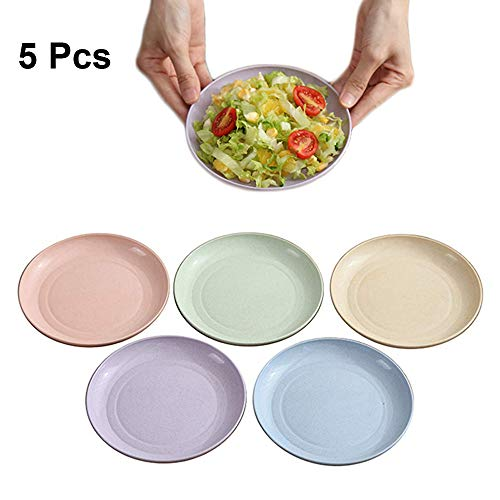 Goter 6 Inch Wheat Straw Appetizer Dinner Plates, Small Serving Cake Dessert Plates, Salad Plates, Charcuterie Accessories, Dipping Sauce Plate, Assorted Colors Dinnerware set of 5, Dishwasher Safe