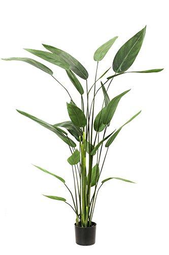 artplants – Künstliche Heliconia ANURIA, 26 Blätter, grün, 175 cm – Deko Zimmerpflanze/Kunst Strelizie