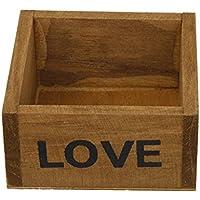 Primi Vintage de madera natural de flores plantas carnosas maceta caja