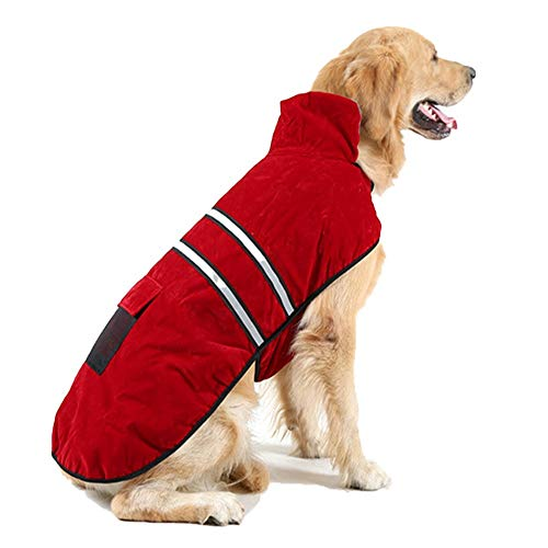Husky Siberian Kostüm - PiPisun Hundebekleidung für den Winter, Golden Retriever, Sicherheit, Fluoreszenz, reflektierend, doppelt Warmer Mantel, S