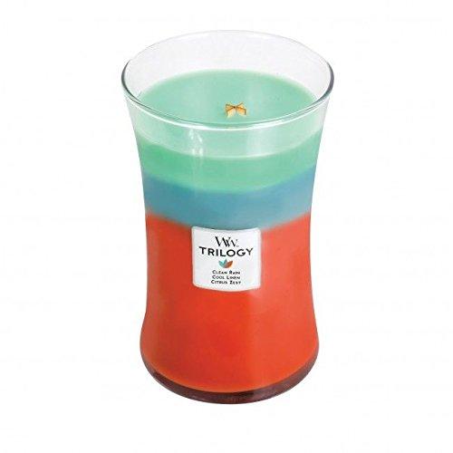 Leinen Duftkerze (WoodWick Geruchsneutralisierend Trilogy Reiner Regen, Kühles Leinen,Zitrusschale Sanduhrformige Große Duftkerze, 609.5 g, Glas, Grün-Blau-Rot/Durchsichtig, 10.2 x 10.3 x 17.5 cm)