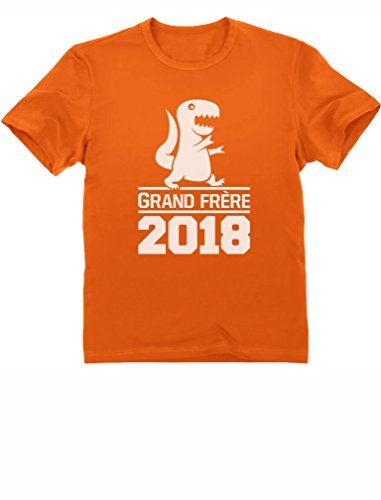 Green Turtle T-Shirts Grand Frère passionné Fan de Dinosaure T-Shirt Garçon 6A Orange