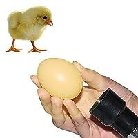 AZX Egg Candler Torch Highlight Led Egg Candling Torch For Chicken Duck Birds Hatching Eggs