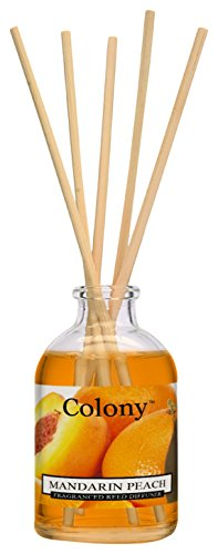 Colony Reed Diffuser 50 ml Mandarine Pfirsich, orange