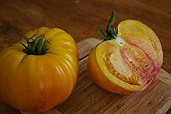 Variété produisant de gros fruits rouges rayés de jaune. Chair bicolore jaune et orangé très caractéristique. D'un gout incomparable !! Quasiment sans pépin, en salade plutôt que farcie.