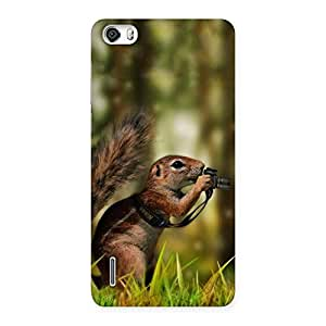 Enticing Squirrel Multicolor Back Case Cover for Honor 6