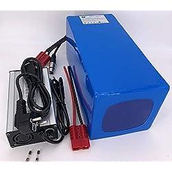 48V 40Ah 1920Wh Akkupack Pedelec E-Bike Scooter Lithium-Ionen Batterie Battery incl. 50A BMS + 4A Ladegerät