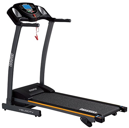 Cockatoo Velocity 1.25 HP/2.5 HP DC Peak Motorized Treadmill
