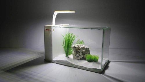 Wave Box Cubo 25 Orion Niedriger Preis Aquarien Haustierbedarf
