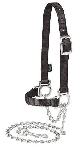 Weaver Leather Nylon Adjustable Sheep Halter with Chain Lead, Black