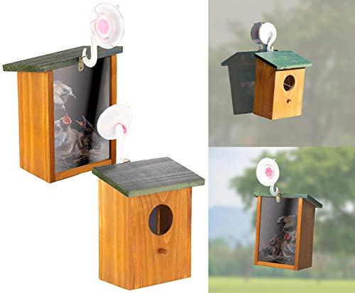 Royal Gardineer Vogel Nistkasten: Fenster-Nistkasten aus Echtholz, mit starkem Saugnapf und Sichtfenster (Fensternistkasten)