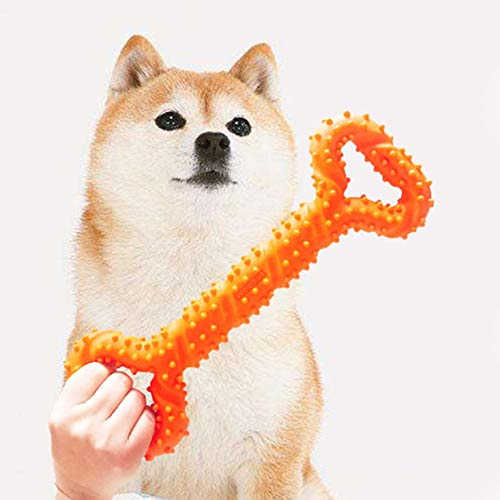 huichang Hunde Behandeln, Hunde Zahnreinigung Sticks für Hunde, Welpen Training, Spielen und Kauen (Orange) -