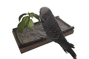 """Vogel Sitzbrett """"M"""" mit Umrandung inkl. Befestigungsmaterial, tolles Vogelzubehör Vogelspielzeug Vogelspielplatz für den Vogelkäfig für Wellensittiche, Kanarienvögel, Papageien und viele andere Vögel, Nager und Reptilien, 100% Naturprodukt zum Sitzen, Ausruhen, Anknabbern, Schlafen, Original Vogelgaleria Produkt, Länge: ca. 20 cm Breite: ca. 10 cm"""