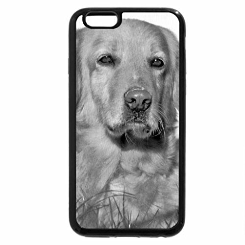 iPhone 6S Case, iPhone 6 Case (Black & White) - Dog laying on grass