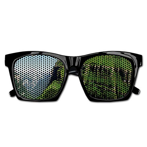 EELKKO Mesh Sunglasses Sports Polarized, Wild Majestic Bird Flying Great Landscapes Green Mountains Forest Nature Image,Fun Props Party Favors Gift Unisex