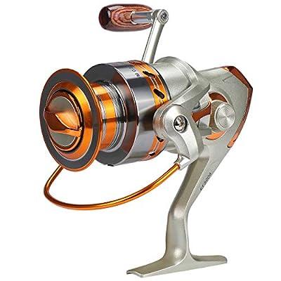 KEESIN Fishing Spinning Reels 5.2:1,12 Ball Bearings Left Right Interchangeable Metal Fishing Reel