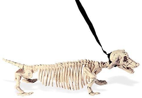 Widmann–Hund Dackel Skelett mit Leine unisex-adult, weiß, 55cm, -