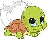 Bambinella® Aufbügler - Motiv: Schildkröte Turtle aus dem Ei – gedruckte Velour/Flock Applikation zum selbst Aufbügeln auf Baumwolle, Baumwollmischgewebe und Polyester. Hergestellt in Deutschland