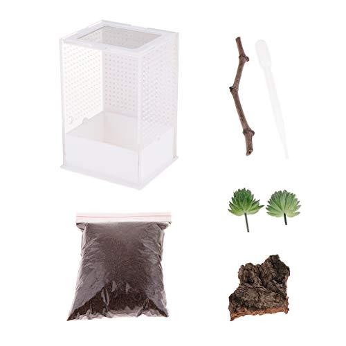 perfk Terrarium transparente Fütterungsbox Zuchtkasten für Reptilien und Insekten, 10,5 x 10,5 x 15 cm - Typ 2