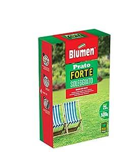 Blumen Prato Forte Soleggiato 500 gr, Verde