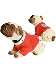 England Football Club-Awesome PMS chien