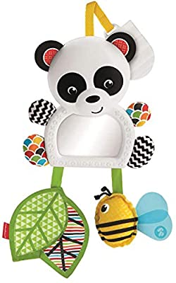 Fisher-Price On-The-Go Panda, New-born Sensory Take Along Toy with Mirror and Different Textures, Suitable from Birth