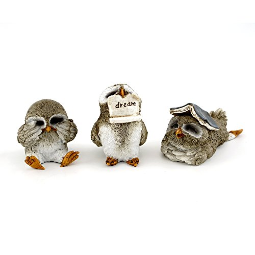 Top Collection Miniatur Fairy Garden & Terrarium Cute Little Owls Statue (Set von 3), klein