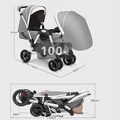HSRG Cochecito Doble, Bandeja Desmontable de Comida Plegable para bebés gemelas, Espacio de Almacenamiento Grande para bebés, Gray