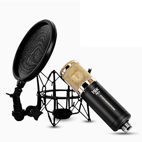THINKMIC Micrófono Vocal, Estudio Profesional de presión (en Forma de corazón apuntando, 20hz - 20khz, Fuente de alimentación Phantom 48v) para grabación, doblaje, Coro, Etcetera.